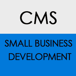 CMS Small Business Development